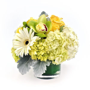 Palmer's Flowers: Seasonal Mix Arrangement (cylinder)