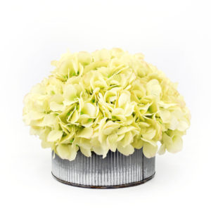 Palmer's Flowers: Metal Tin Hydrangea (Medium)