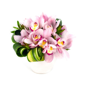 Valentine's Day at Palmer's Flowers - Exotic Orchids