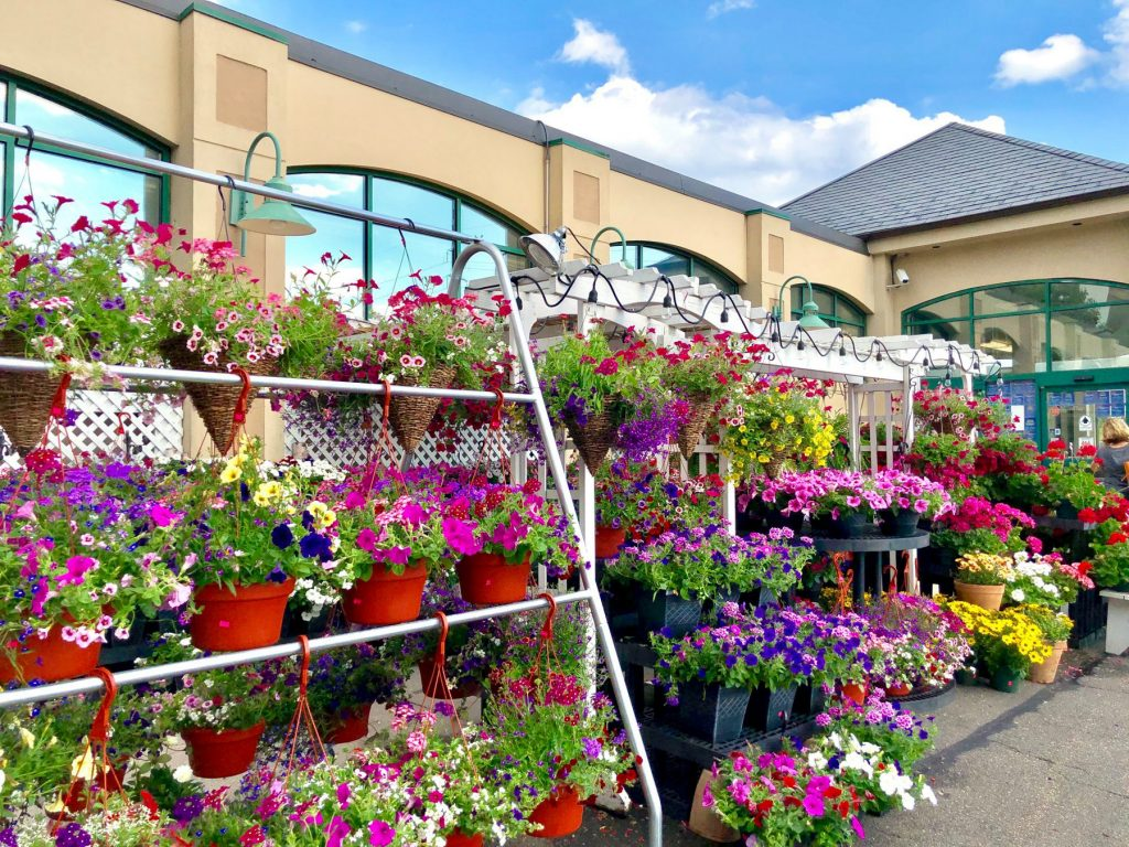 Palmers Market – Store Gallery – Flowers – -02